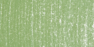 Moss Gray Green173