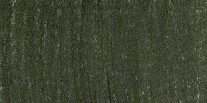 Metallic Black Gold 616