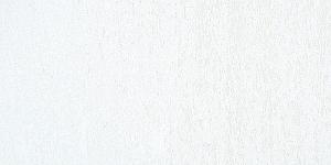 Titanium White010