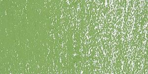 Olive Green 2 D