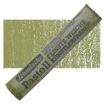 Olive Green1 B