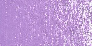 Reddish Violet D