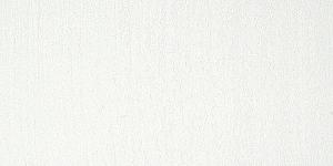 Warm White 501P