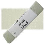 Moss 5