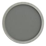Neutral Gray Shade