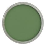 Permanent Green Shade