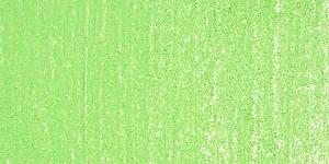 Lizard Green 2