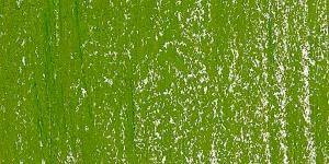 Sap Green 4