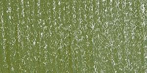 Sunlit Grass 610