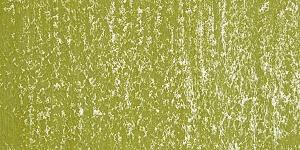 Sunlit Grass 611