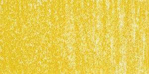 Sunlit Grass 613