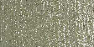 Warm Greenish Gray 171