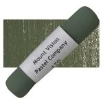 Warm Greenish Gray 170
