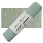 Warm Greenish Gray 172