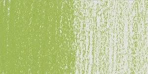 Light Olive 20%