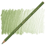 Olive Green Light