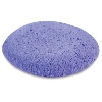 Studio Pro-Sponge, Medium Texture