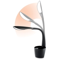 LED Desk Organizer Lamp