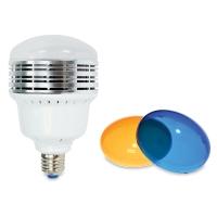 700 Watt LED Studio Light Kit
