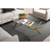 Archtech Modern Coffee Table (Shown in use)
