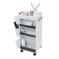 Swivel Organizer, Back (art supplies not included)