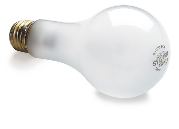 Replacement Photo Bulb