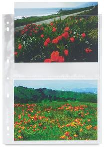 Print Sleeve 4
