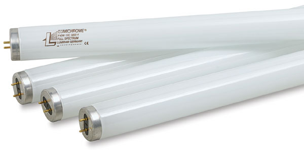 Fluorescent Lamps, Carton of 4