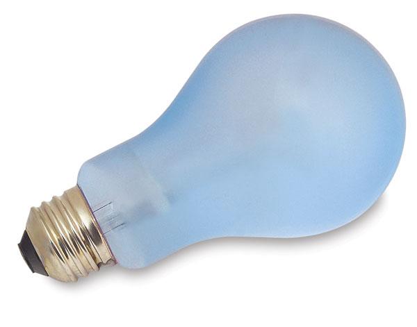 Regular Bulb