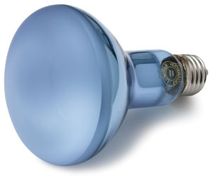 Halogen Flood Bulb