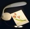 Naturalight All-Spectrum LED Lamp, Natural Setting