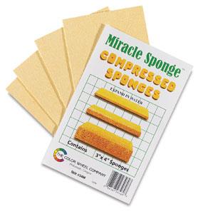 Miracle Sponges