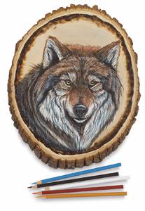 Basswood Shapes Sample Artwork