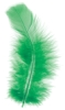 Plumage Feathers, Green, 0.5 oz Pkg