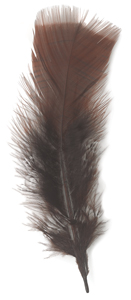 Plumage Feathers, Brown, 0.5 oz Pkg