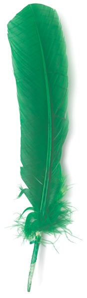 Green Turkey Feather