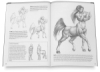 Drawing Made Easy: Dragons and Fantasy