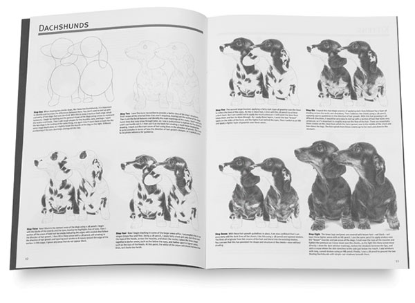 Drawing Dogs & Cats