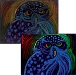 Black Velvet Mystery Painting