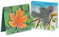Plantable Pulp Cards