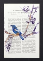 The Printed Page