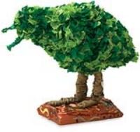 Tissue Topiary