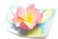 Water Lily Origami Pop-Up Card